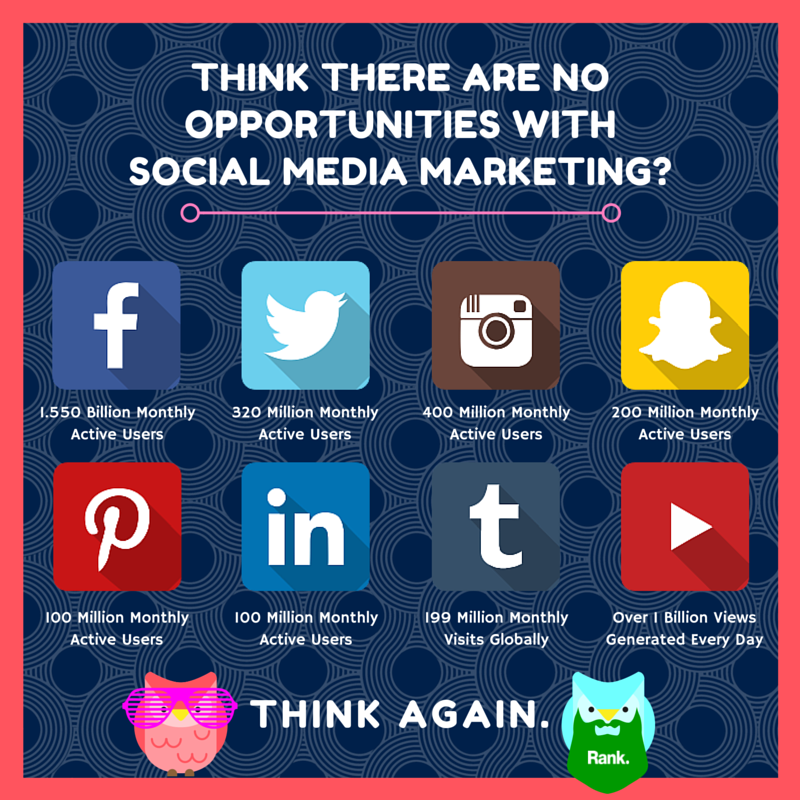 Social Media and Birds